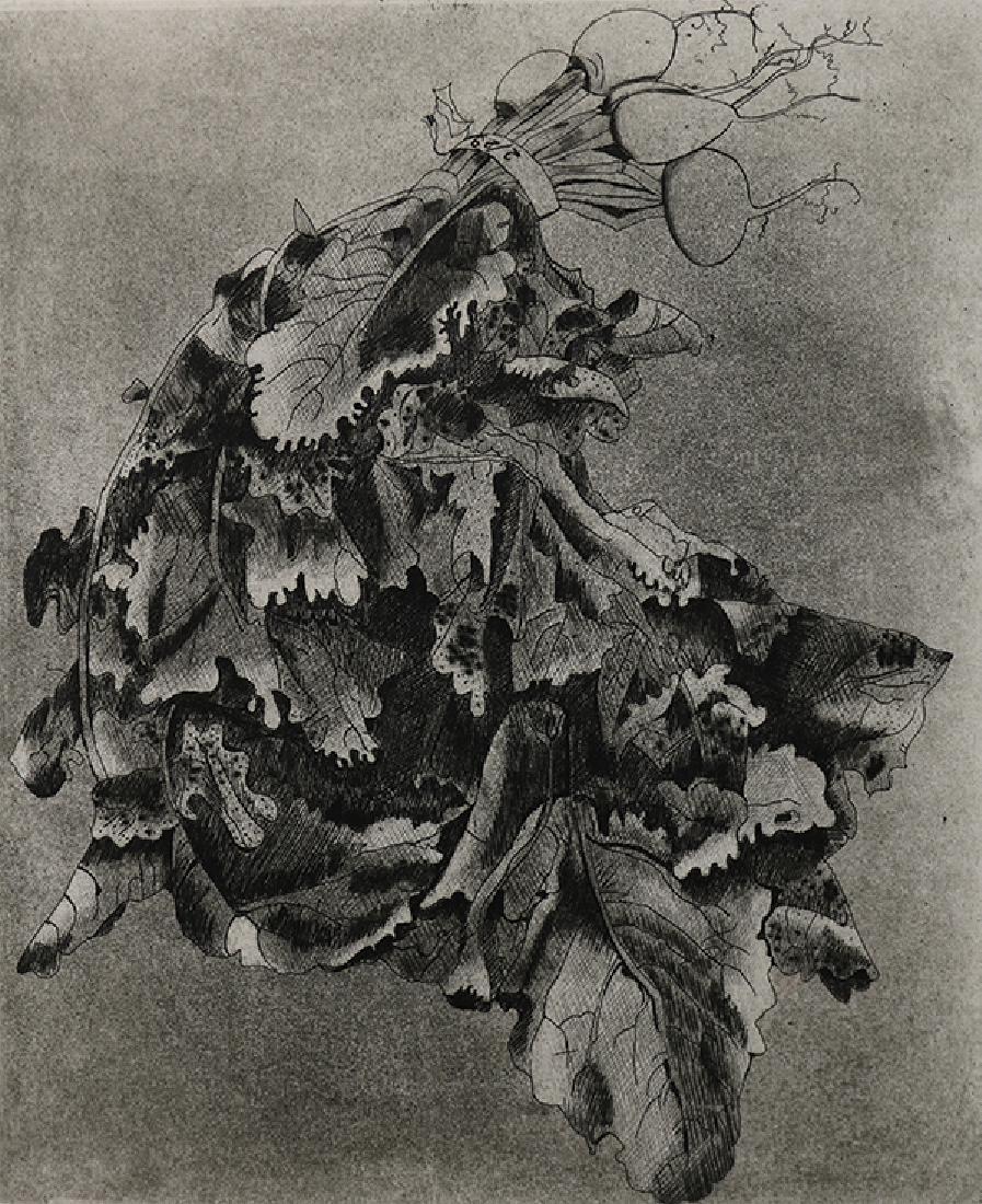 Print, Beth Van Hoesen, Turnips