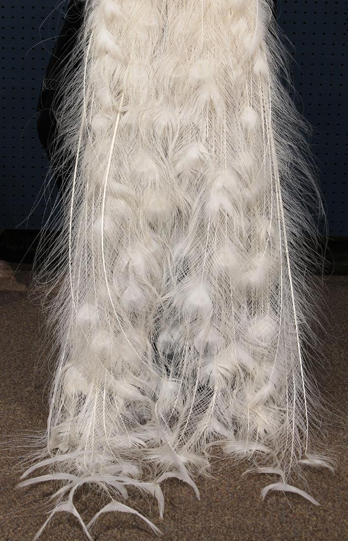 Large taxidermy trophy of an albino peacock - 6