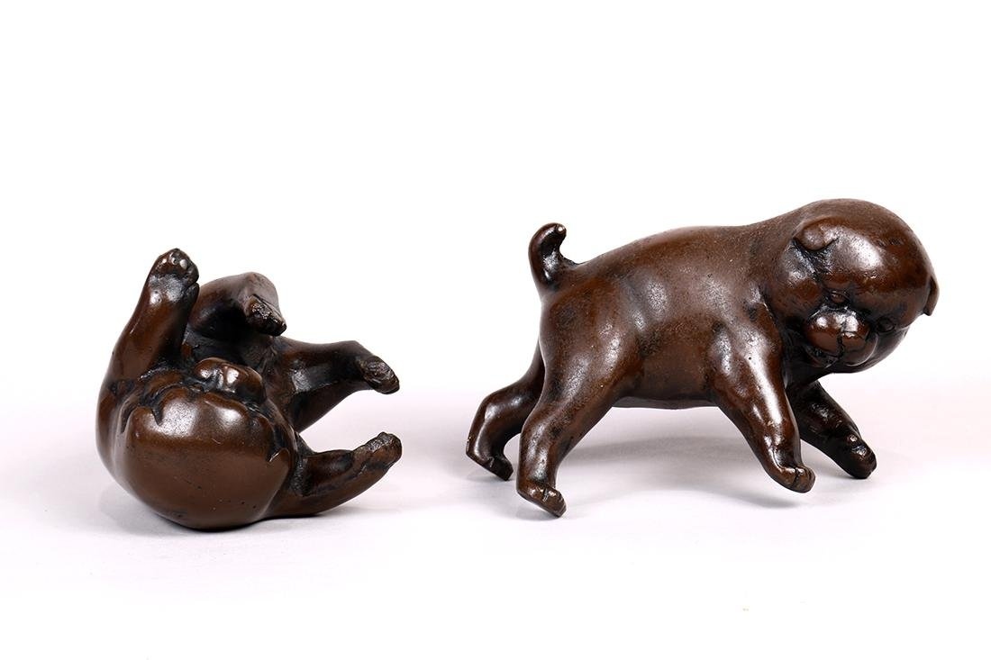 Japanese Bronze Puppies - 4