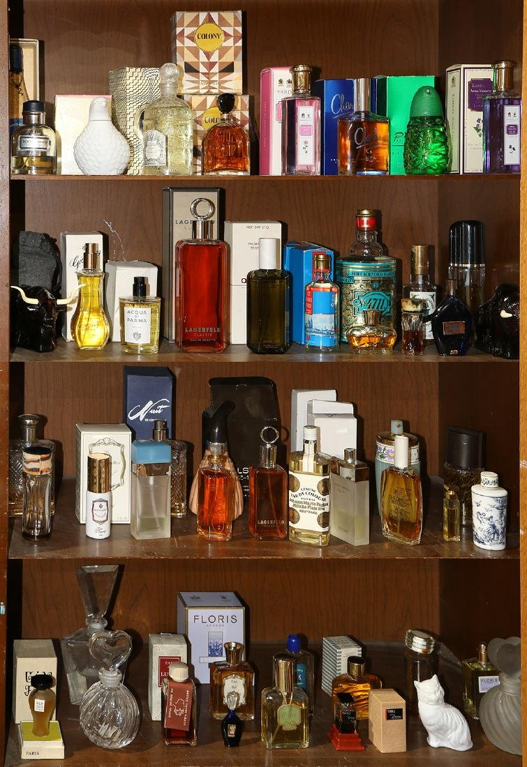 Four shelves of luxury perfumes