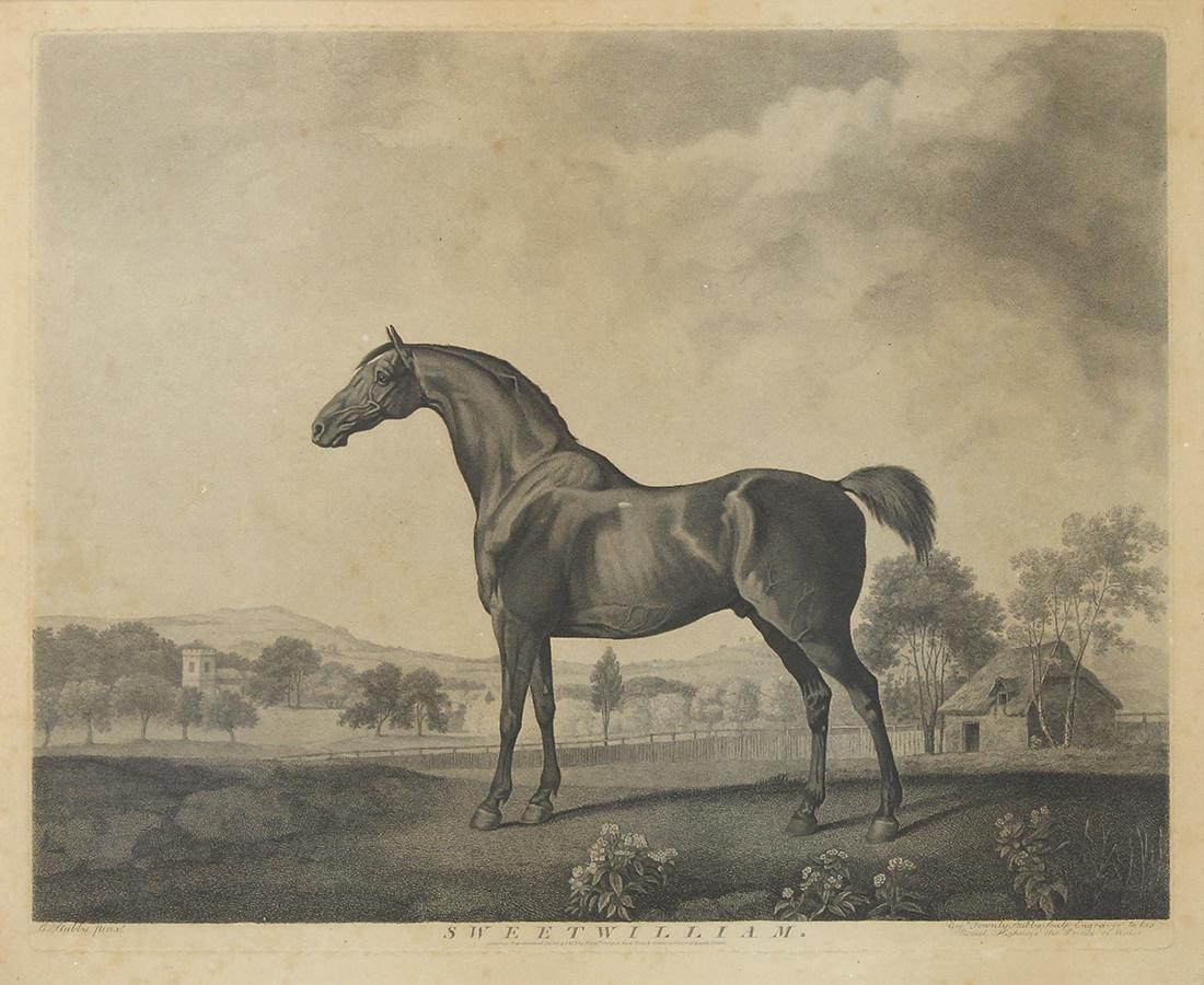 Print, George Stubbs