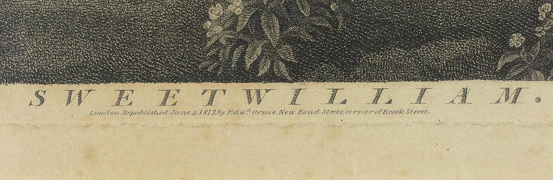 Print, George Stubbs - 5