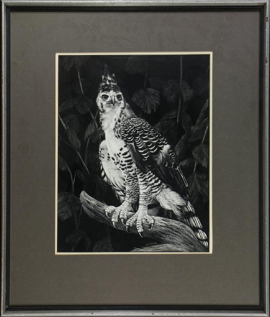 Print, Daniel C. Toledo, Hawk