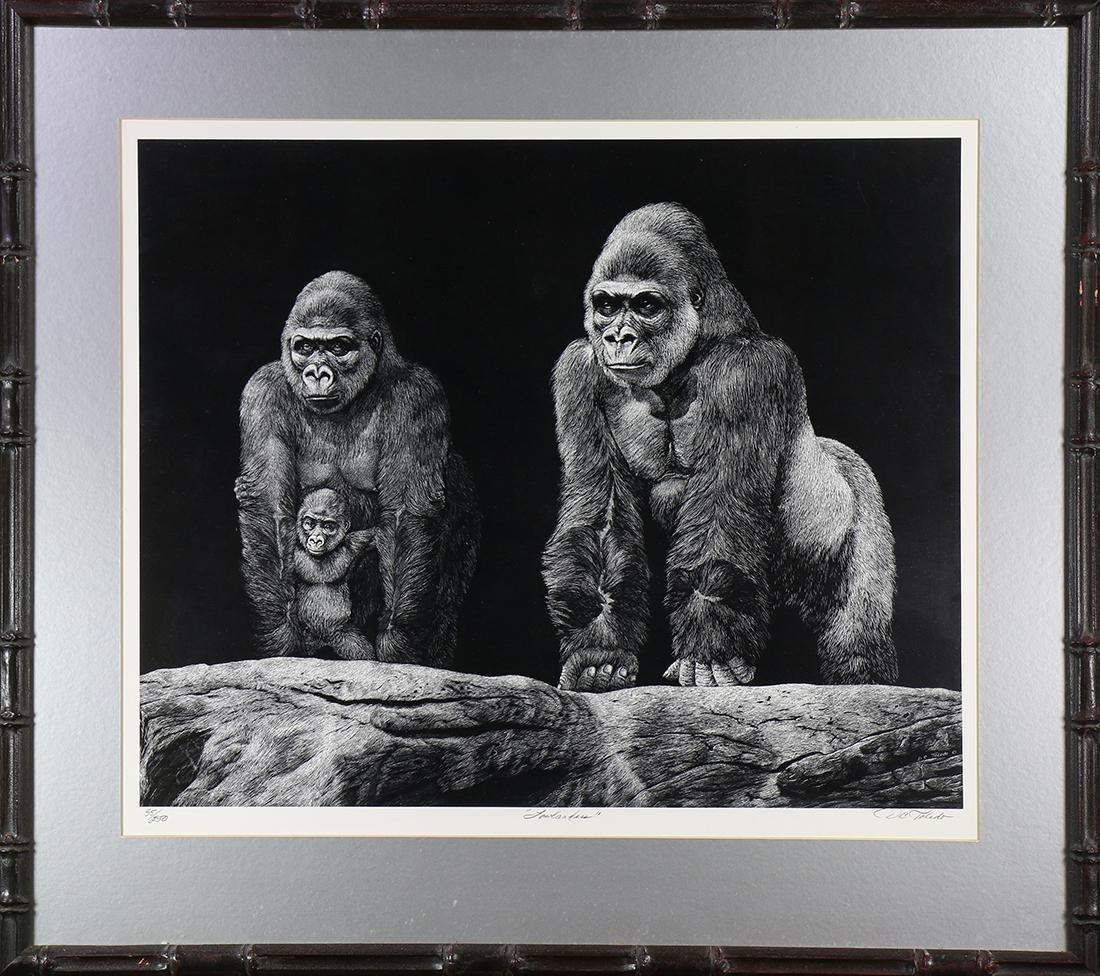 Print, Daniel C. Toledo, Gorilla Family