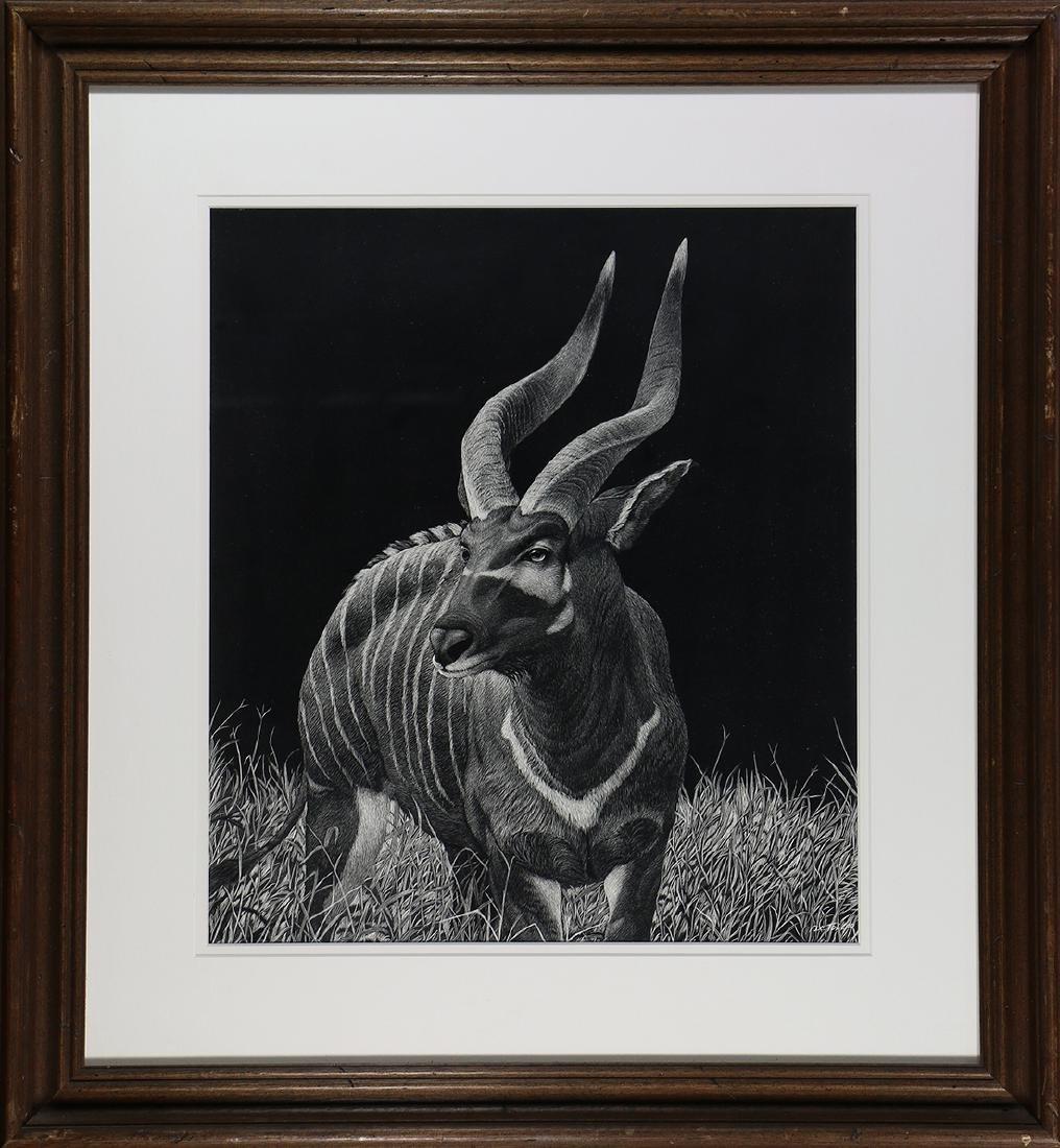 Print, Daniel C. Toledo, Bongo