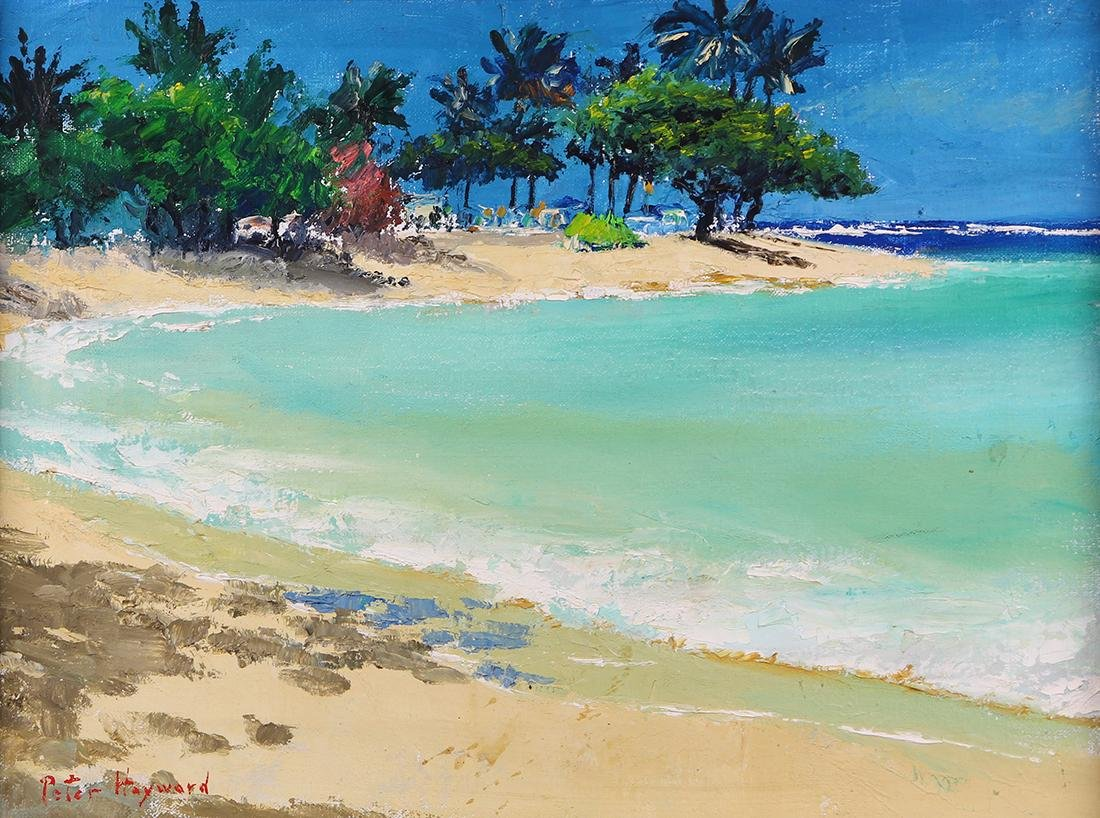 Painting, Peter Hayward