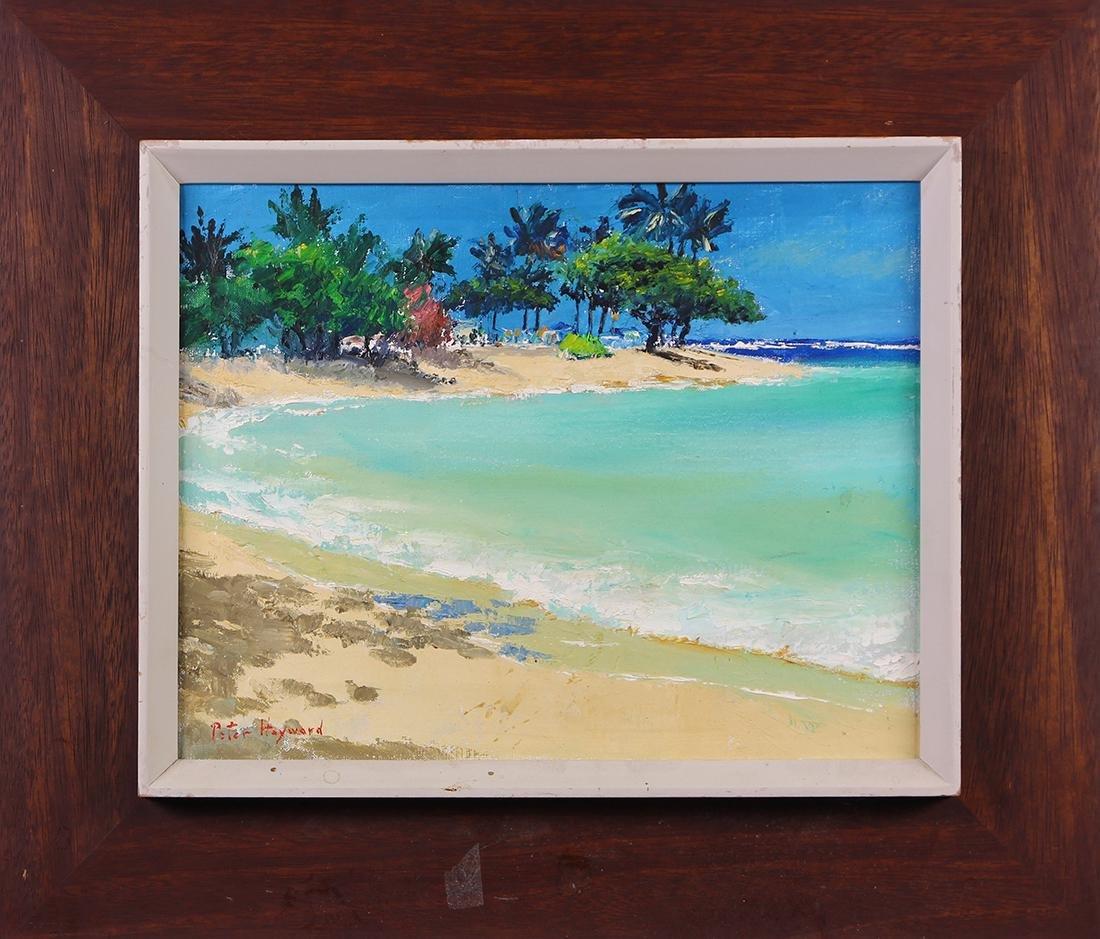Painting, Peter Hayward - 2