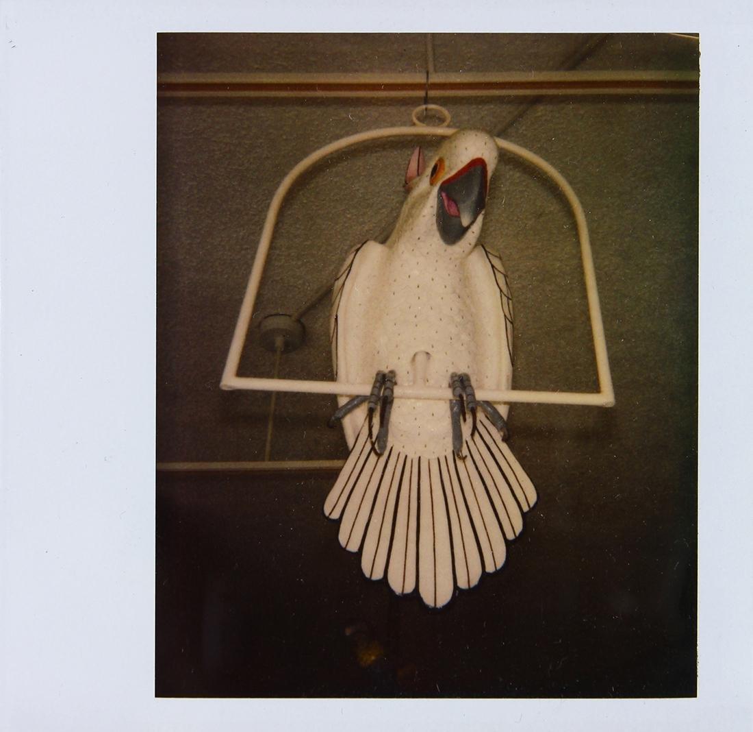 Polaroid, Andy Warhol