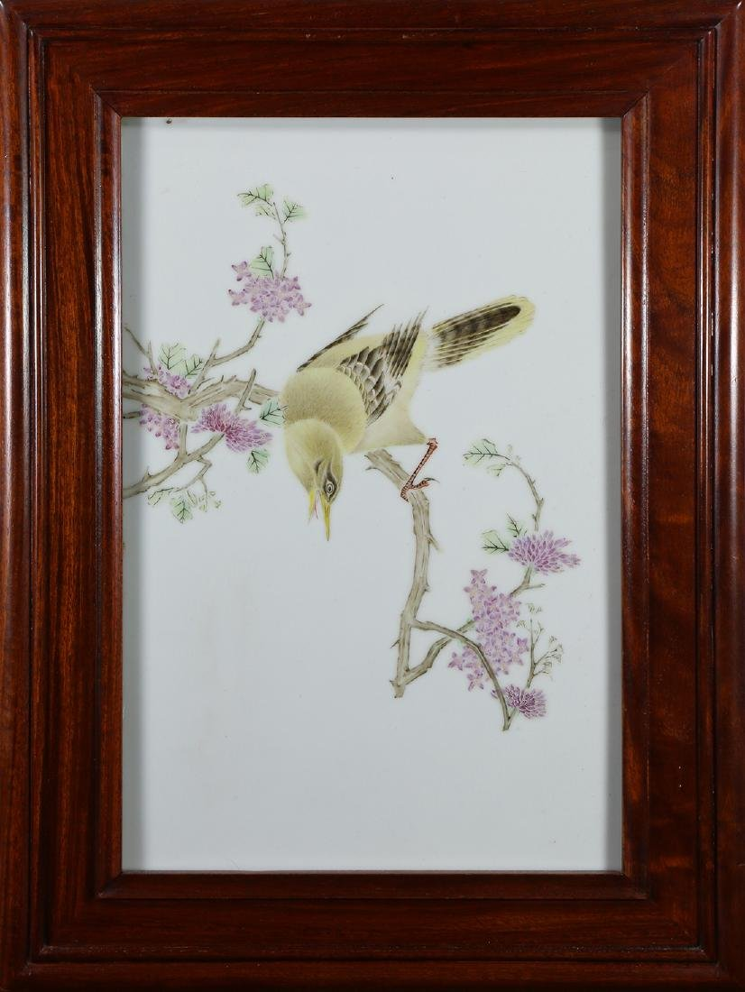 Chinese Porcelain Plaque, Bird