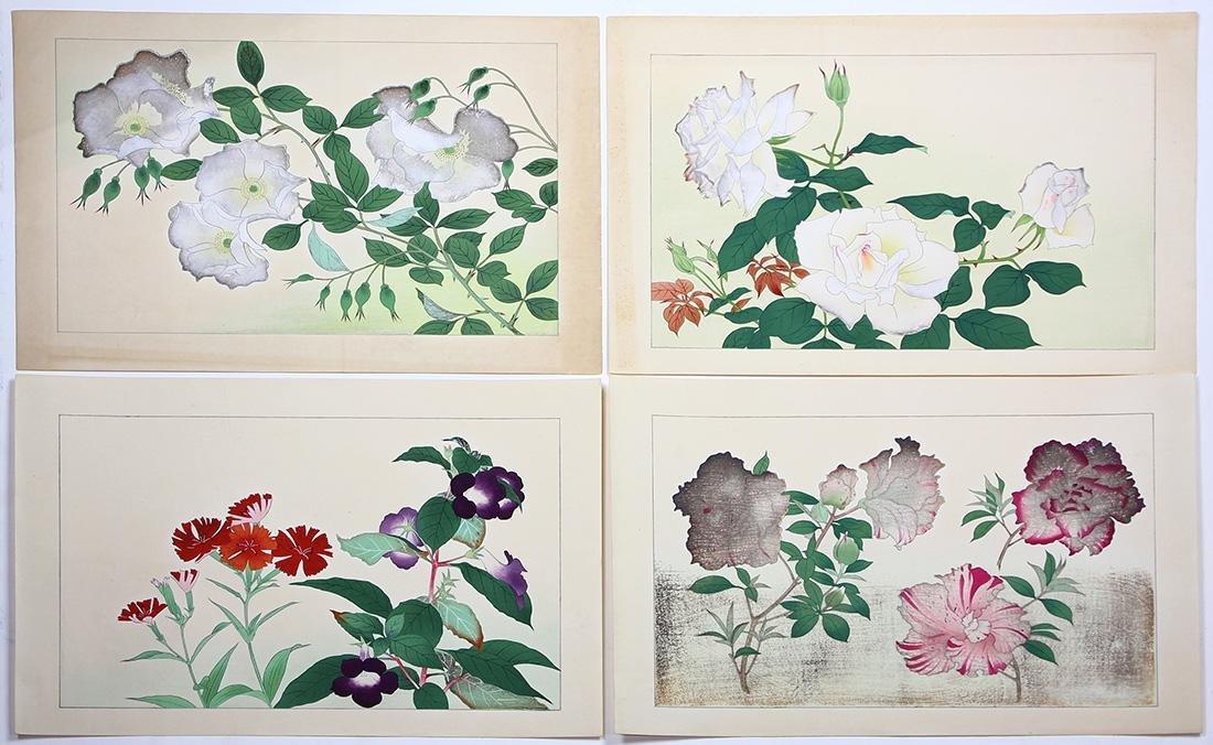 Japanese Woodblock Prints, Nishimura Shodo, Flowers - 4