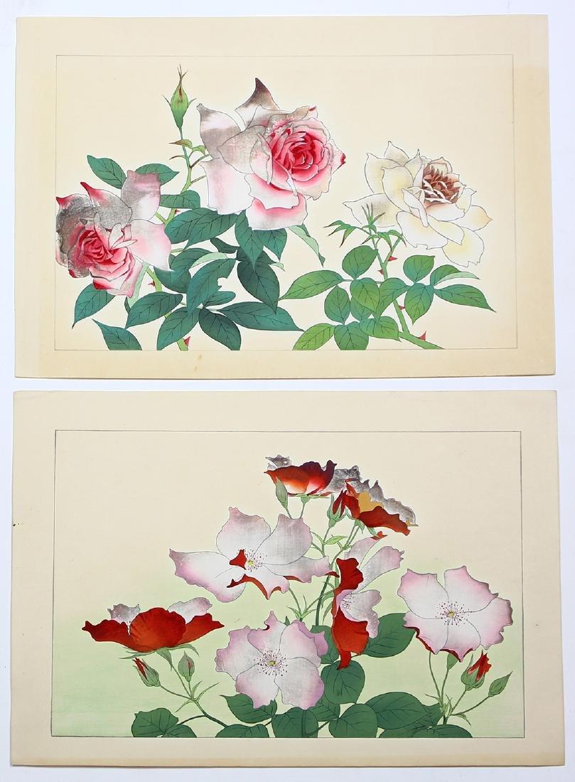 Japanese Woodblock Prints, Nishimura Shodo, Flowers - 5