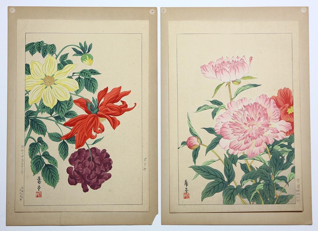 Japanese Woodblock Prints, Nishimura Shodo, Flowers - 6