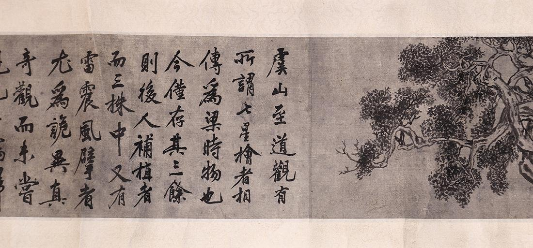 Chinese Scrolls, Manner of Shen Zhou, Pine Trees - 7