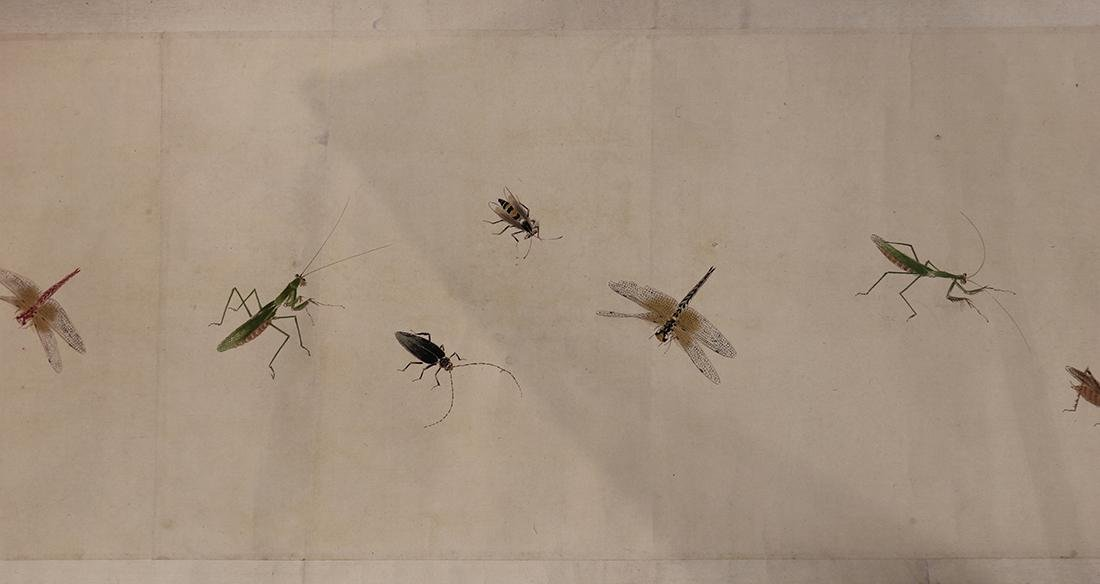 Chinese Handscroll, Manner of Qi Baishi, Insects - 3