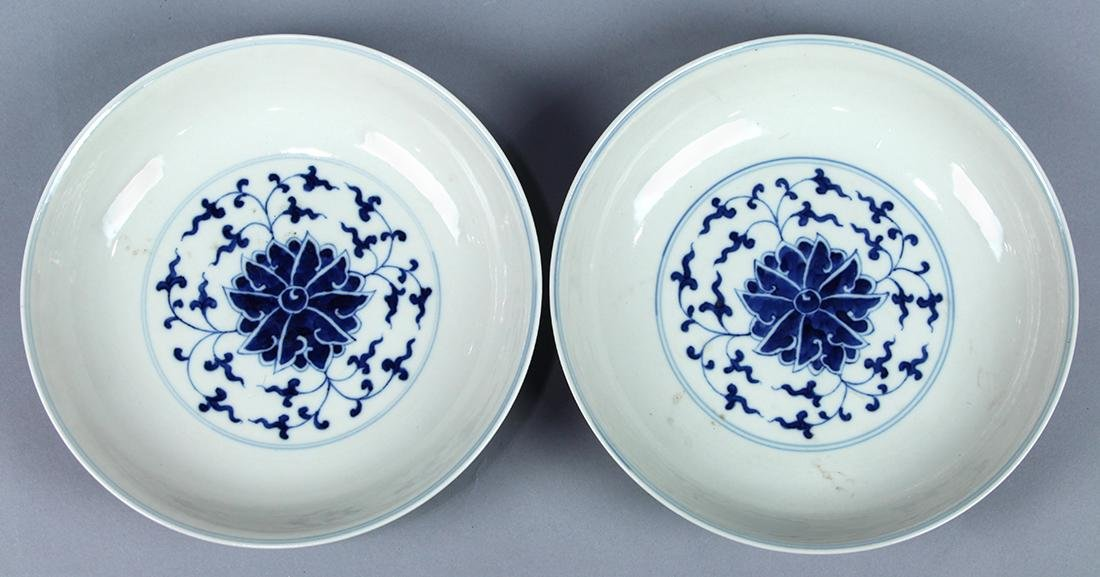 Two Chinese Blue and White Porcelain Plates