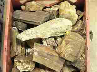 Petrified wood, Jasper, Chalcodony