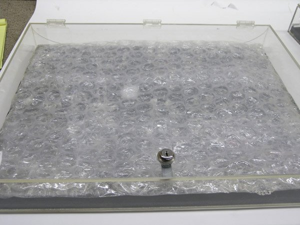 5900: Plexiglass jewelry display case