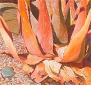 Work on Paper, Linda Kyser Smith