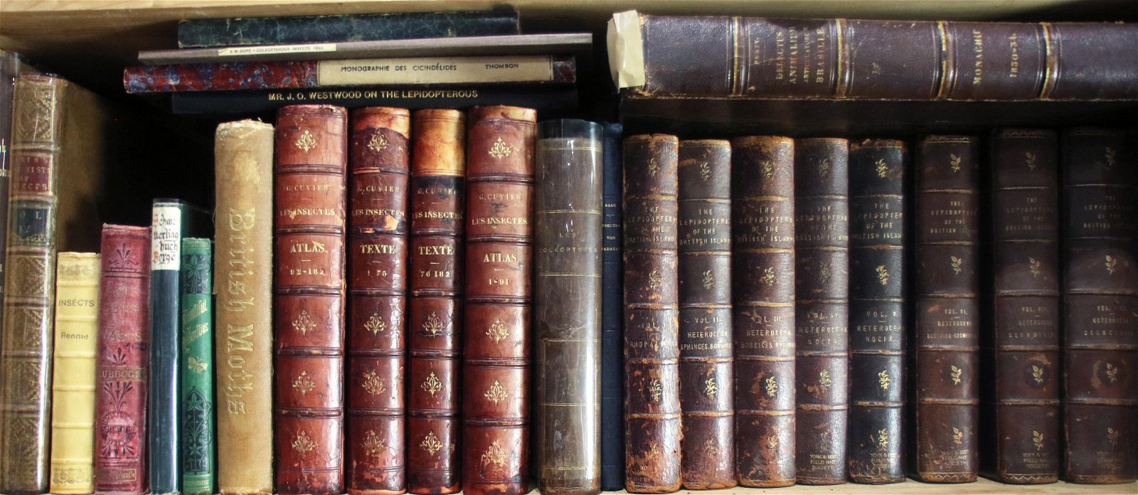(lot of approx. 26) Historical texts on entomology