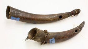 Hollow Animal Horns, West Africa
