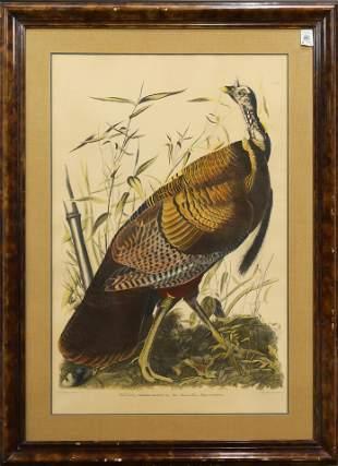 Print, After John James Audubon