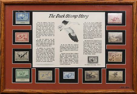 US Federal Duck Stamp Display 1934-44, including Scott