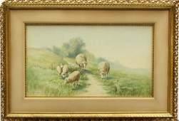 2161: Watercolor, Addison Thomas Millar, Sheep Wanderin