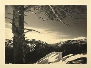 6233: Photographs, Ansel Adams, Parmelian Portfolio
