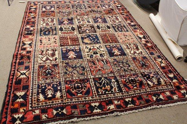6343: Bakhtiari garden rug