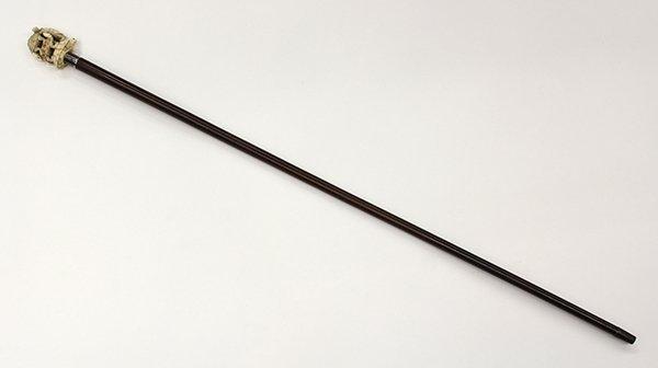 Lady's walking stick