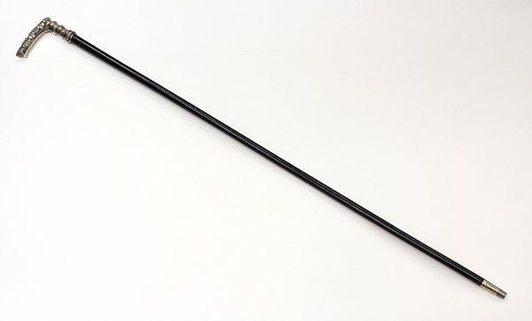 Sterling walking stick
