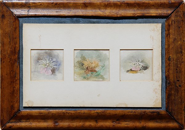 Watercolors, John Ruskin - 2