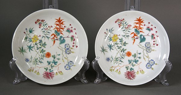 Two Chinese Porcelain Plates, Flowers