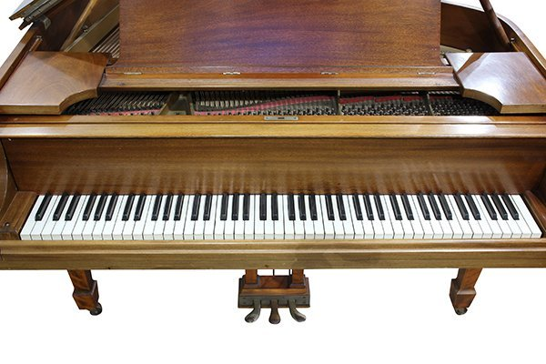 Steinway and Sons - 4