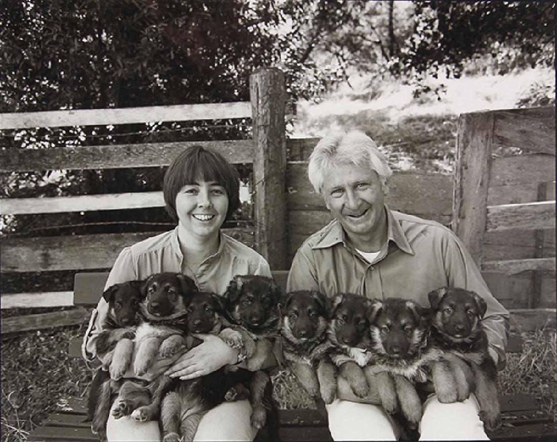 Photograph, Art Rogers, Puppies