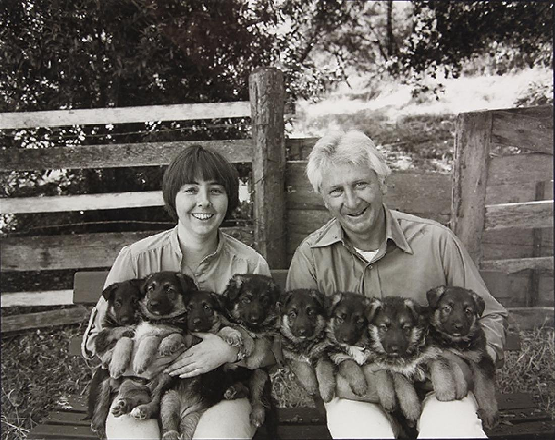 Photograph, Art Rogers, Puppies
