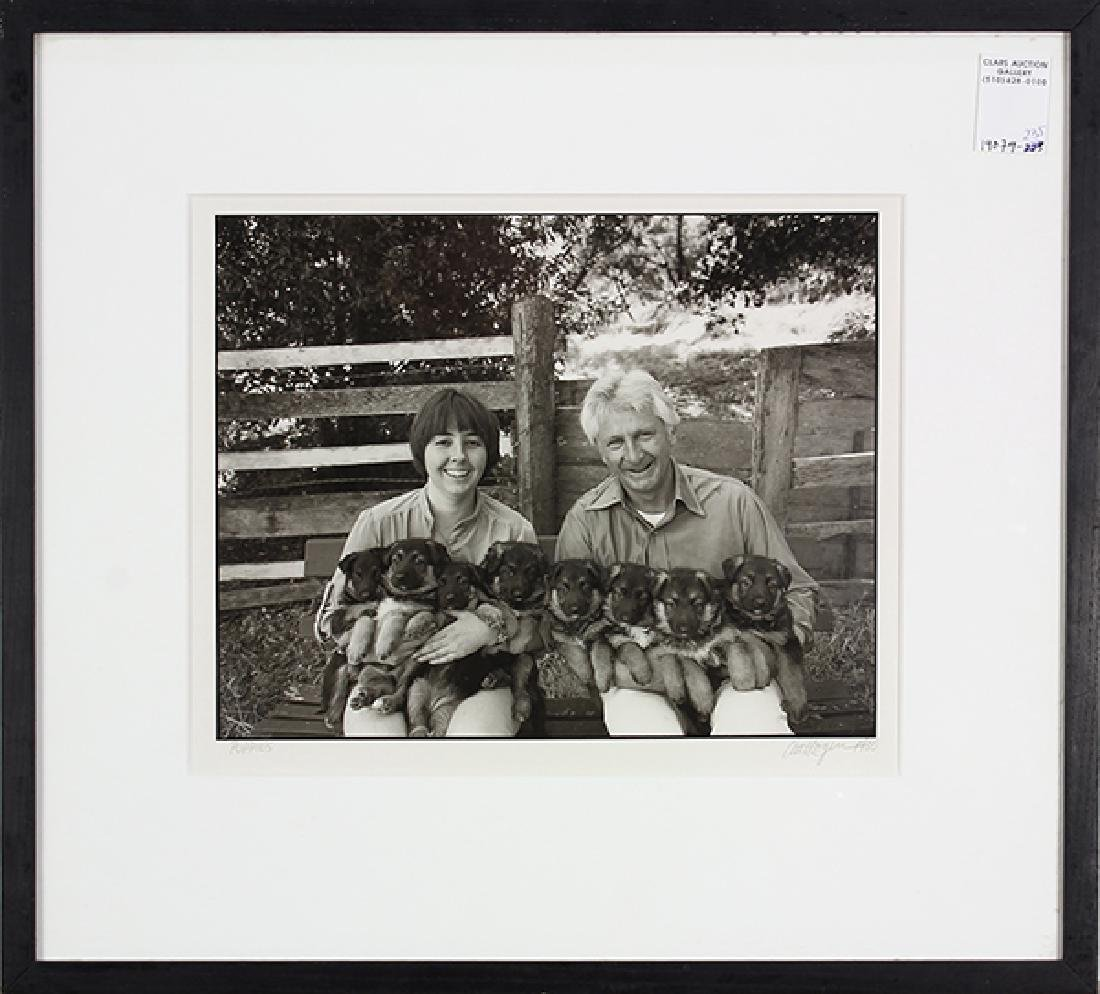 Photograph, Art Rogers, Puppies - 2