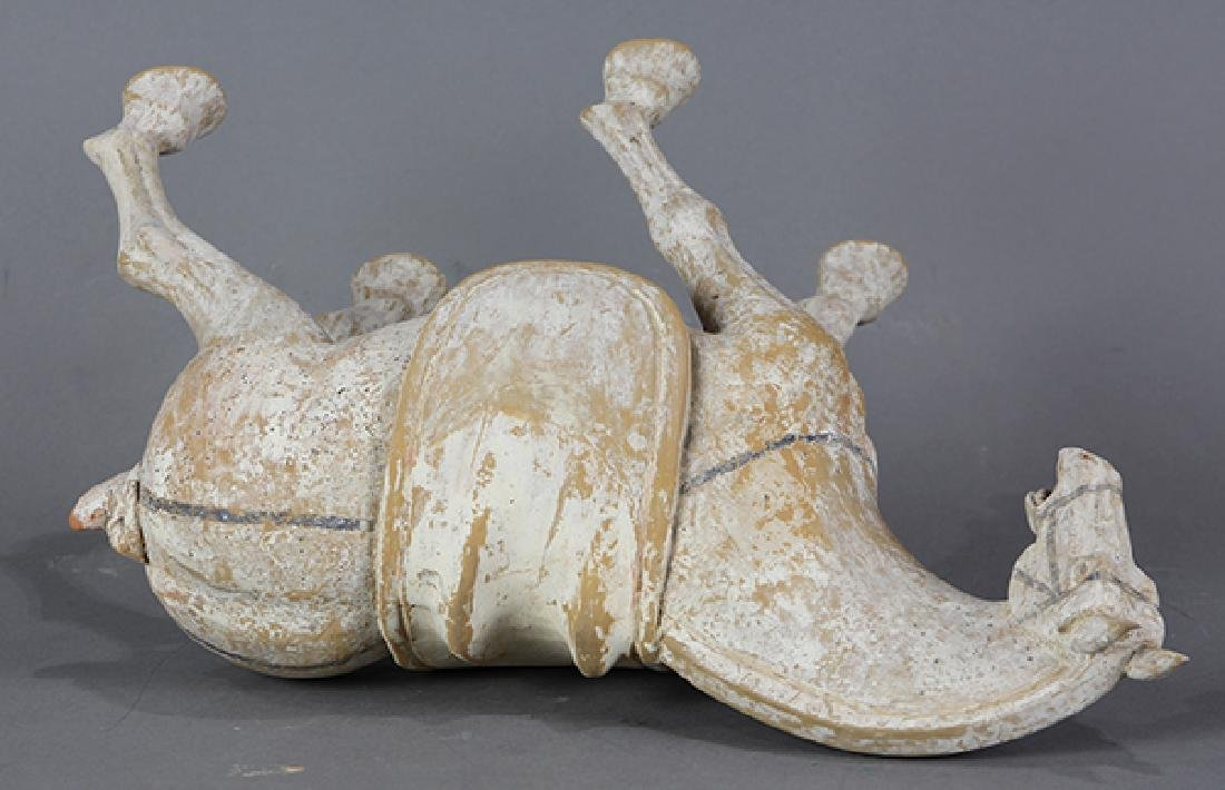 Chinese Tang-style Ceramic Horse - 5
