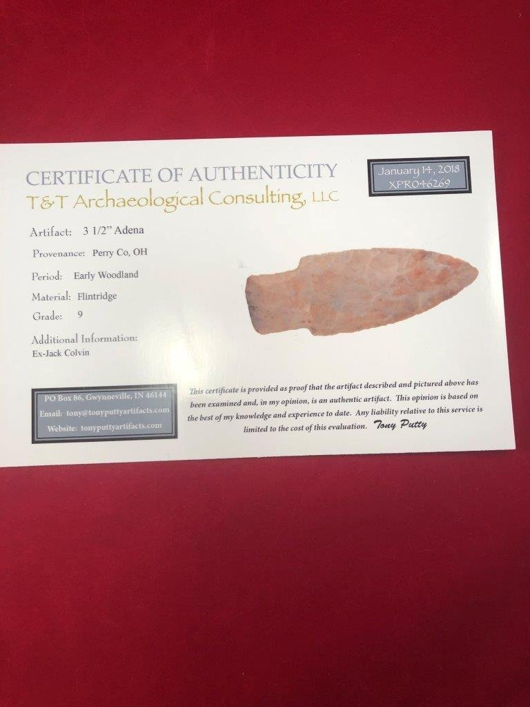 ADENA   INDIAN ARTIFACT ARROWHEAD WITH COA - 5