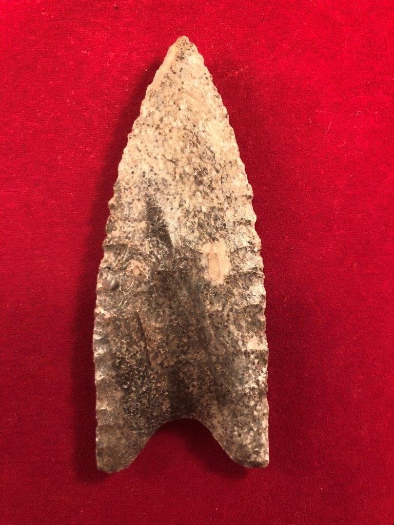 DALTON       INDIAN ARTIFACT ARROWHEAD - 2