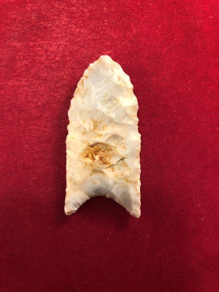 CLOVIS      INDIAN ARTIFACT ARROWHEAD WITH COA - 3