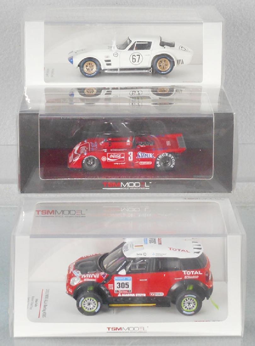 3 TSM MODEL RACERS