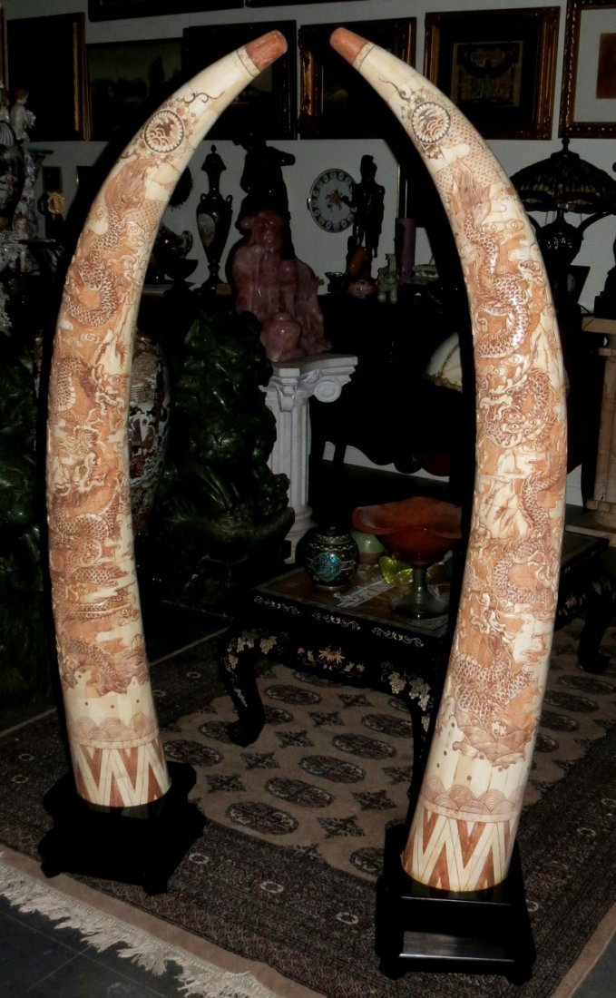 Pair of  Bone Horns, execellent carving Tusk shaped