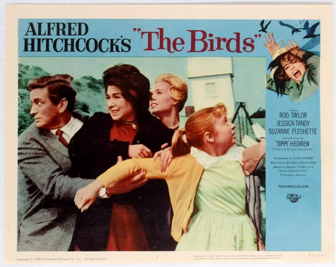 Movie Lobby Card Alfred Hitchcock The Birds