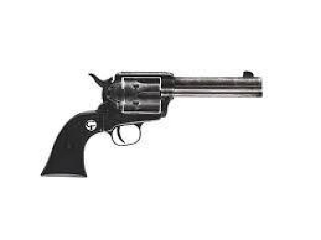 _NEW!_ CHIAPPA FIREARMS 1873-22 SINGLE-ACTION REVOLVER