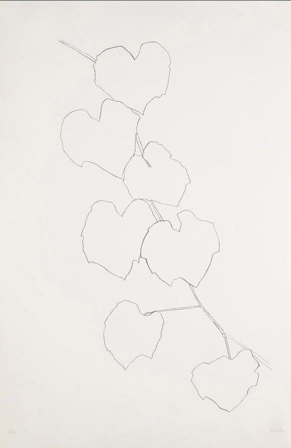 Ellsworth Kelly Grape Leaves II (1973-74)