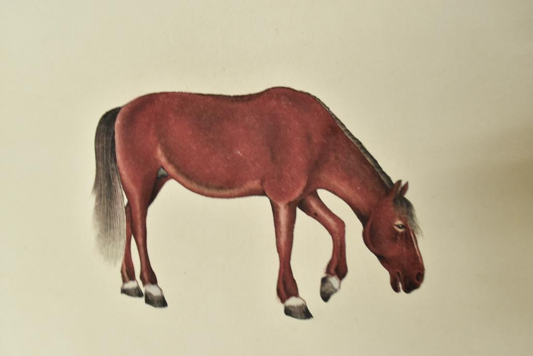 CHINESE PAINTING SCROLL OF HORSE - 4