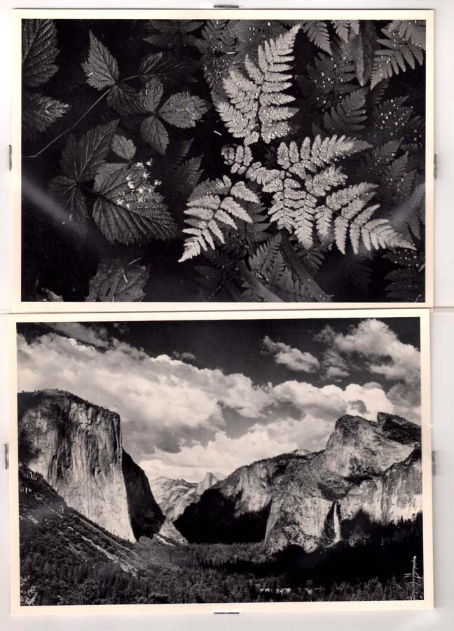 110:  ADAMS,  ANSEL,  American 1902-1984,