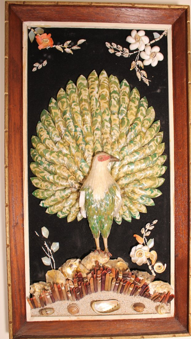 Peacock made of seashells on velvet canvas