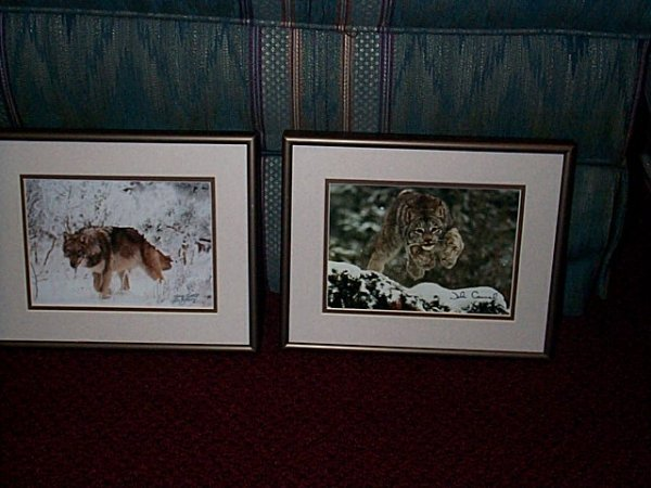 15: Lot of two, wildlife photographs.  One depicts a wo